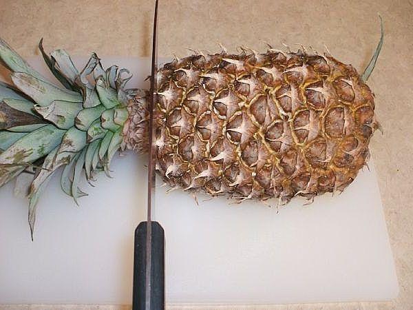 выращивание ананаса