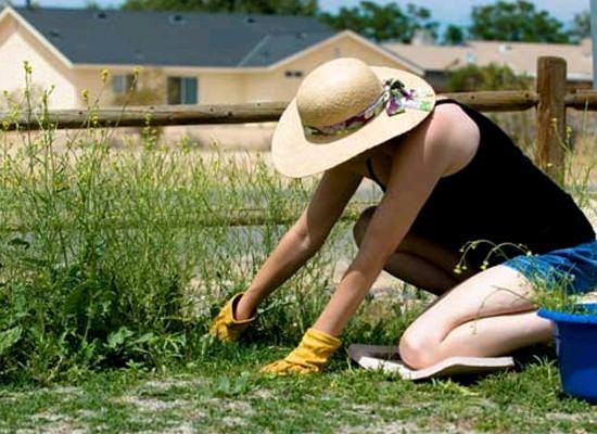 девушка в шляпе на огороде