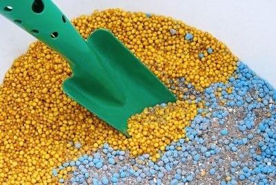 минеральные удобрения для рассады