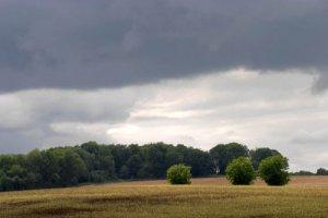 перед дождём применять гербицид не эффективно