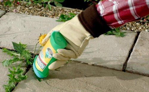 раундап-гель для выборочного уничтожения растений