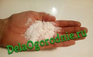 горсть хлорида натрия