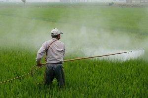 внесение гербицида на поле