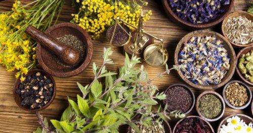деревенская аптечка из растений